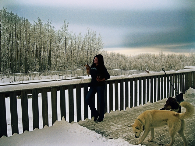 Singer and songwriter Jezz Harvey at home int he Canadian wilderness with her dogs and Half wolf Marley